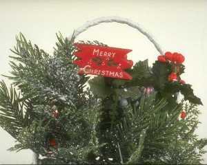 Branches de sapin Noël - copie